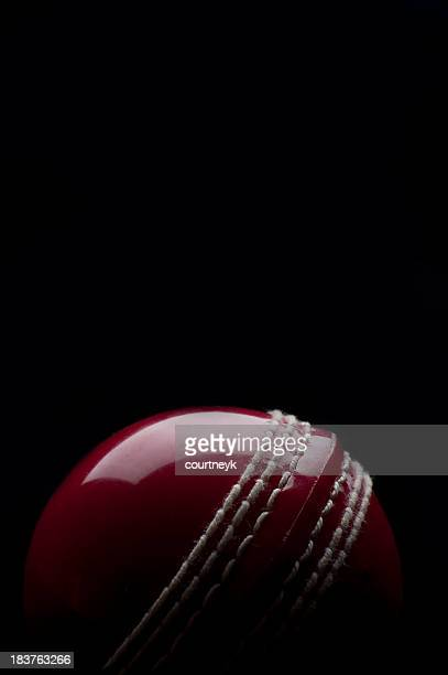 Shiny cricket ball