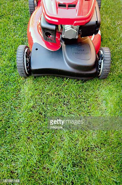 shiny red lawnmower is ready to cut - lawn mower stock pictures, royalty-free photos & images