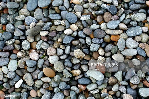 Shiny Wet Pebbles on Ocean Shore, Pacific Northwest