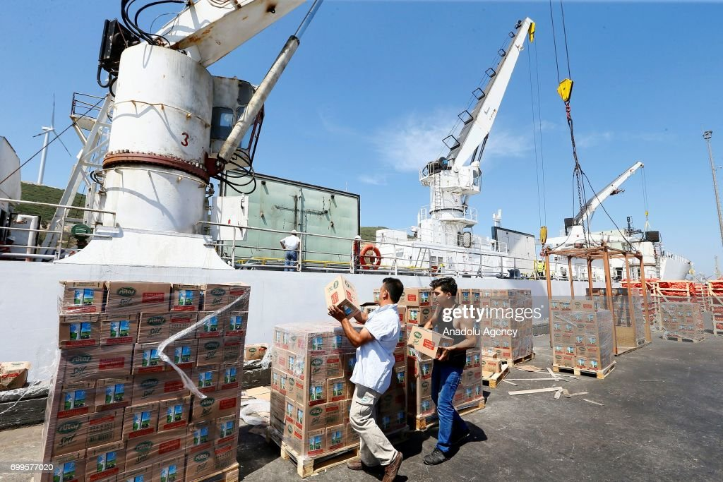 A ship carrying 4,000 tons of food for beleaguered Qatar prepare to