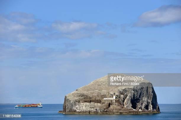 ship passing bass rock, scotland - richard flint stock pictures, royalty-free photos & images