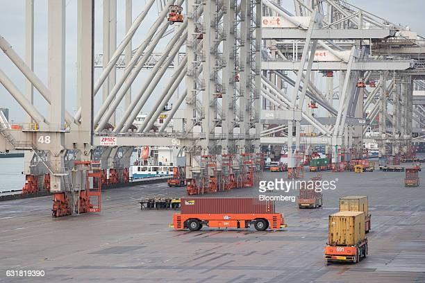Shipping containers are transported by automated guided vehicles beside gantry cranes on the dockside at the Delta Terminal operated by Europe...