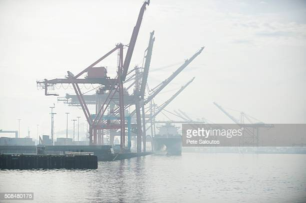 Shipping cranes in foggy industrial harbor