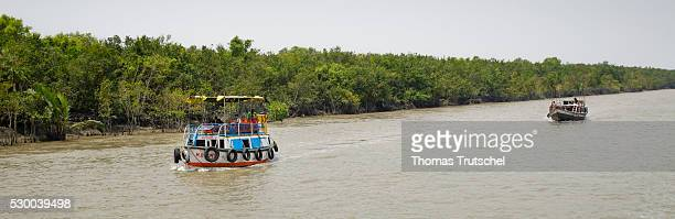 Ships pass through the banks of the world 's largest mangrove forest near the town of Mongla in the southwest of Bangladesh on April 12 2016 in...