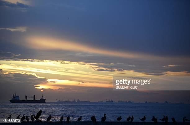 Ships wait at the entrance of the Bosphorus connecting the Black Sea with the Sea of Marmara during sundown on January 23 in Istanbul AFP...