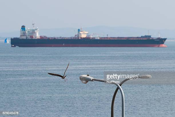 Ships wait to come into port off the coast of Los Angeles after a long ILWU labor dispute stopped work at the port of Long Beach CA Feb 21 2015