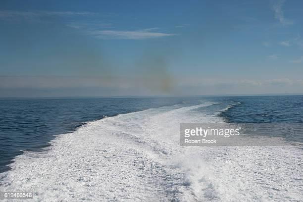Ship's wake with pollution from engine exhaust.