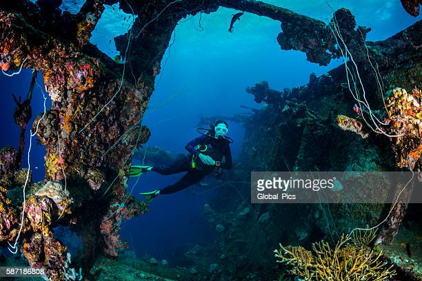 shipwreck dive - palau, micronesia - shipwreck stock pictures, royalty-free photos & images