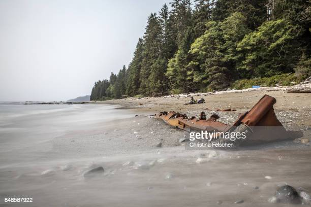 shipwreck on the beach of the west coast trail, canada - christina felschen stock pictures, royalty-free photos & images