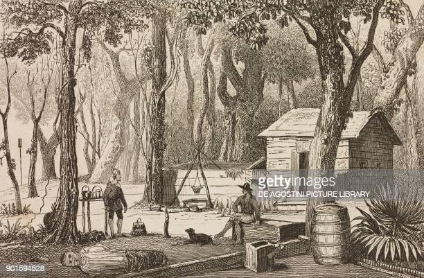 Shipwrecked sailors on the Australian coast engraving from Oceanie ou Cinquieme partie du Monde Revue Geographique et Ethnographique de la Malaisie...
