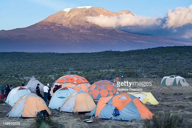Shira Camp One, Lemosho Trail, Mount Kilimanjaro.