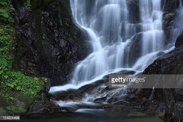 shiraito falls - 福岡県 ストックフォトと画像