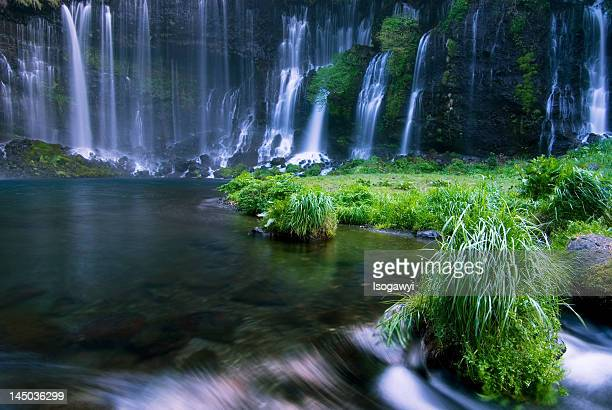 shiraito falls - isogawyi stock pictures, royalty-free photos & images