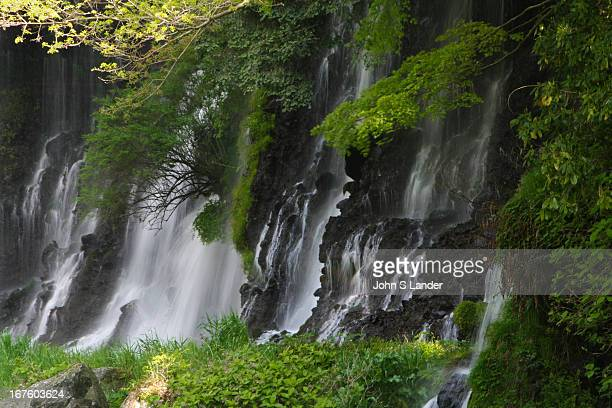 Shiraito Waterfalls or 'Falls of White Thread' is one of the top 100 waterfalls in Japan each year earning a different ranking usually as a result of...