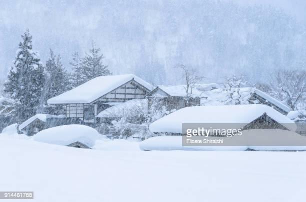 shirakawa village - 深い雪 ストックフォトと画像