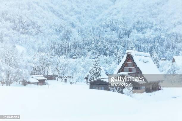 shirakawa-go in snow - chalet de montagne photos et images de collection