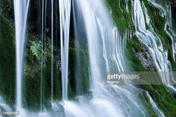 shiramizu falls - isogawyi stock pictures, royalty-free photos & images