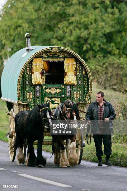 Shire horses pull one hundredyearold gypsy caravan through country lanes StowOnTheWold Gloucestershire United Kingdom