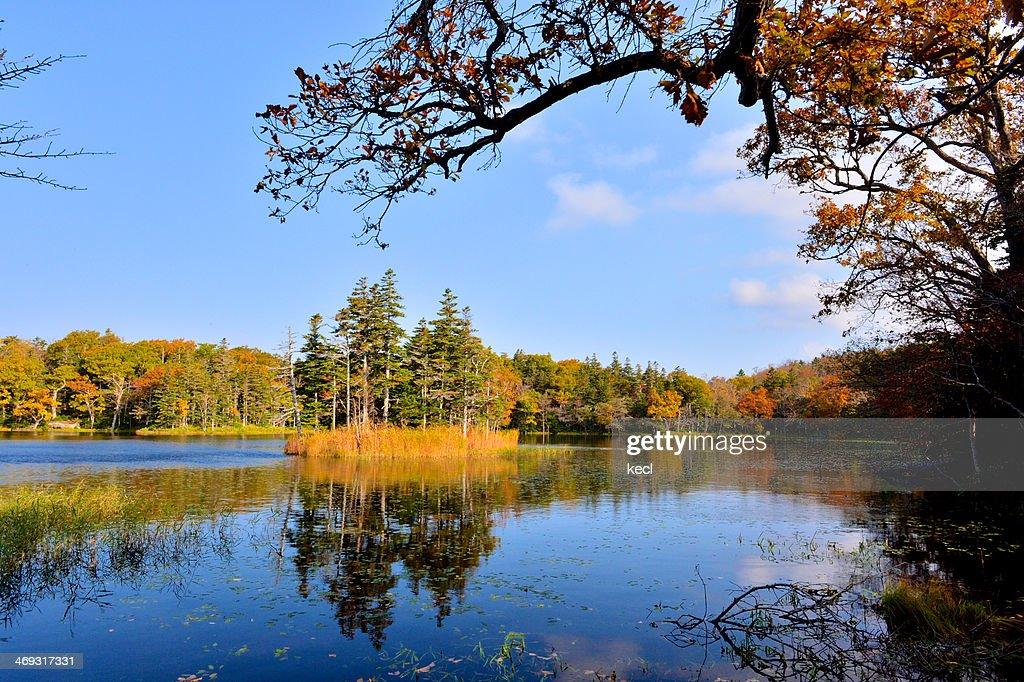 Shiretoko World Nature Heritage : Stock Photo