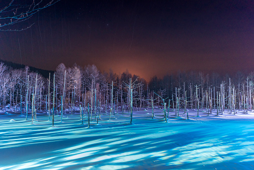 shirogane blue pond light up in the winter - gettyimageskorea