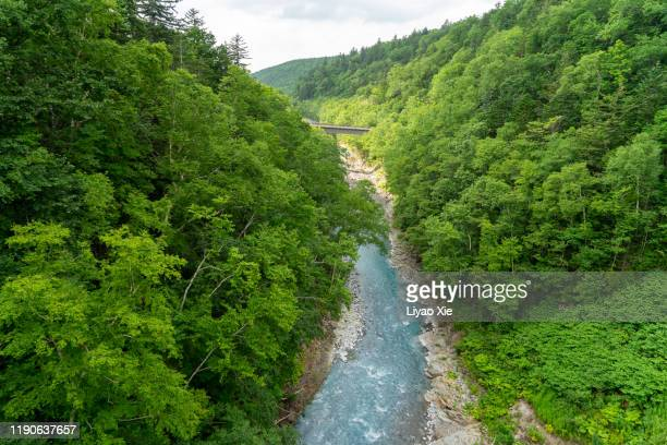 shirohige waterfall river - liyao xie stock pictures, royalty-free photos & images