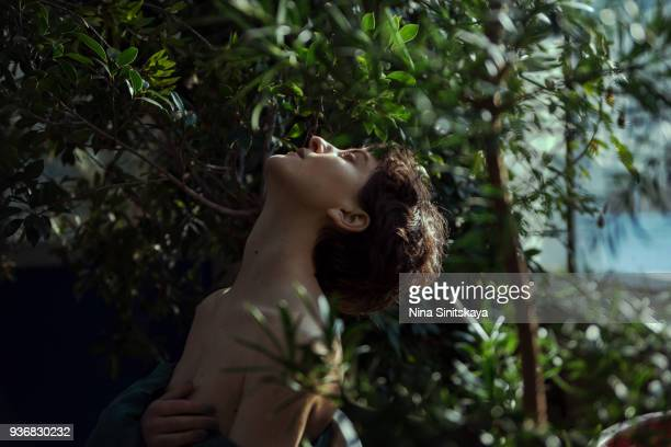 shirtless woman resting among trees - schöne natur stock-fotos und bilder