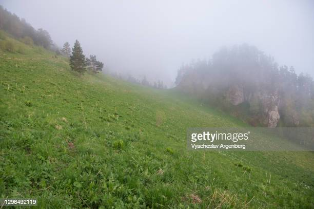 shisha river valley in fog, adygea, caucasus mountains - argenberg stock pictures, royalty-free photos & images