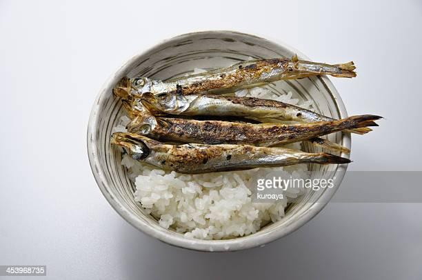 Shishamo smelt on the rice