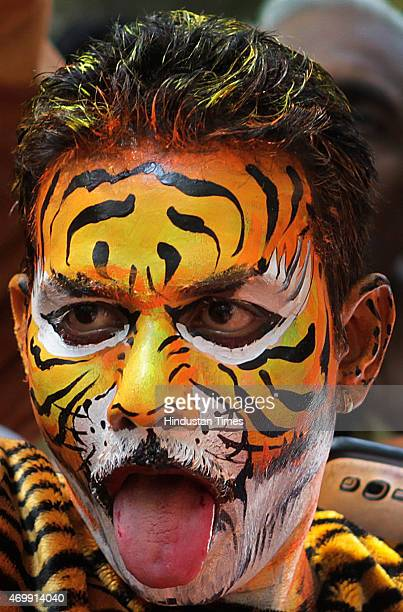 Shiv Sena worker with his face and body painted like a tiger during celebrations to mark their parties victory in the Bandra bypolls on April 15 2015...