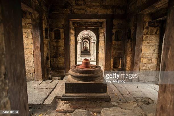 shiva lingam of pashupatinath temple, nepal. - pashupatinath stock pictures, royalty-free photos & images