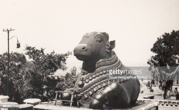 Shiva's Bull on Chamundi Hill Mysore Sculpture of Nandi the Hindu god Shiva's bull vehicle Built in 1659 and carved out of solid rock this sculpture...