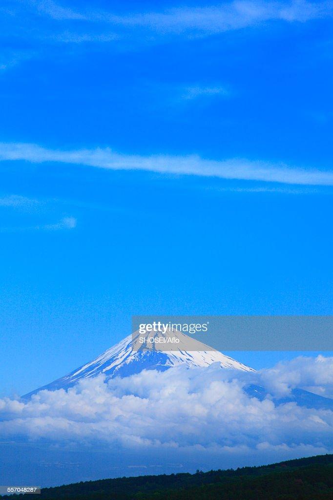 Shizuoka Prefecture, Japan : Stock Photo