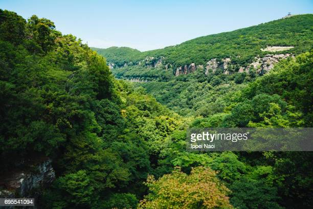 Shodoshima landscape with lush green forests and gorge, Japan