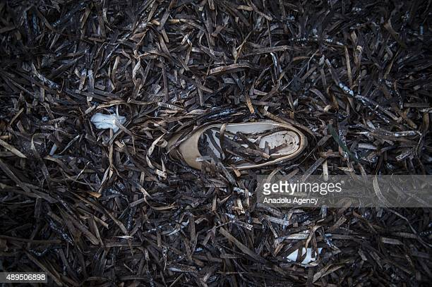 A shoe belonging to a refugee is seen on the coast after refugees arrived in Greece's Lesbos island on September 22 2015 Refugees who begin a journey...