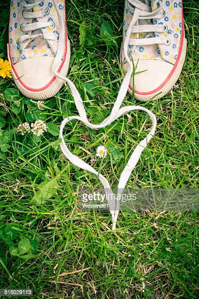 Shoelaces of two sneakers shaping heart on grass