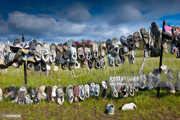shoes hanging on fence - launceston australia stock pictures, royalty-free photos & images