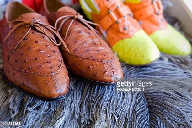Shoes made out of ostrich leather are displayed on August 29 2011 in a shop window in the southern South African city of Oudtshoorn An outbreak of...