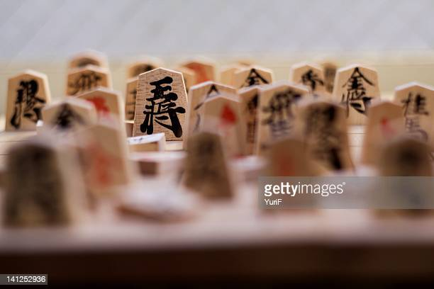 Shogi pieces