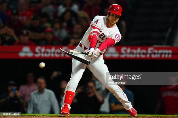 Shohei Ohtani of the Los Angeles Angels of Anaheim breaks his bat during the game against the Texas Rangers at Angel Stadium on September 24 2018 in...