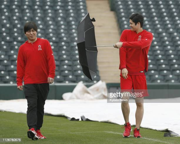 Shohei Ohtani of the Los Angeles Angels splashes water from his umbrella at his English interpreter Ippei Mizuhara at the team's spring training camp...