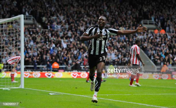 Shola Ameobi of Newcastle celebrates after scoring a goal to make it 4-0 during the Barclays Premier League match between Newcastle United and...