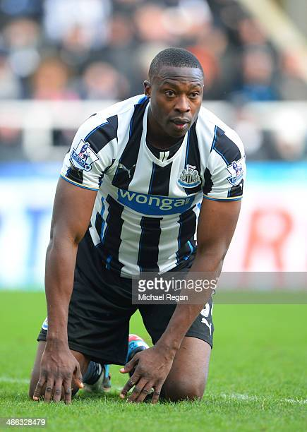 Shola Ameobi of Newcastle looks on after a missed chance on goal during the Barclays Premier League match between Newcastle United and Sunderland at...