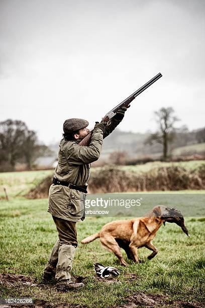 Shooting duck, gundog retrieves