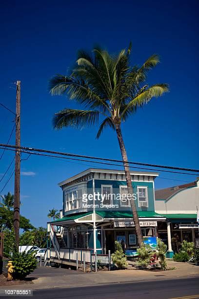shop in paai underneath palm tree. - merten snijders stockfoto's en -beelden