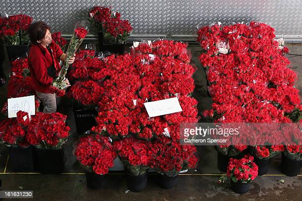 A shop keeper organises flowers for sale on Valentines Day at Sydney Flower Market on February 14 2013 in Sydney Australia Due to an unusually hot...