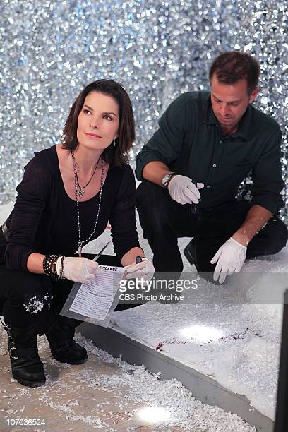 'Shop Till You Drop' Det Josephine 'Jo' Danville left and Danny Messer search for the killer of a department store manager found dead in a holiday...
