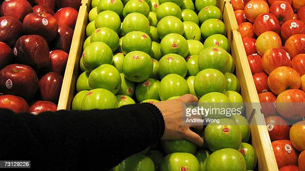 A shopper chooses granny smith apples at the newlyopened Tesco supermarket on January 27 2007 in Beijing China The UK giant opened its first ownbrand...