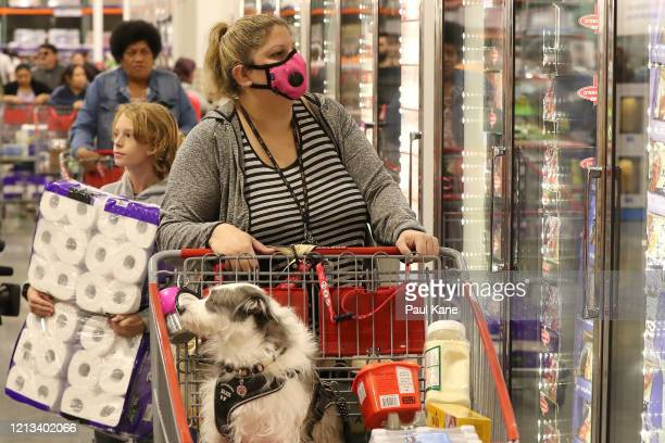 A shopper inspects the cold storage section with her dog in the trolley at Costco Perth on March 19 2020 in Perth Australia The store which is the...