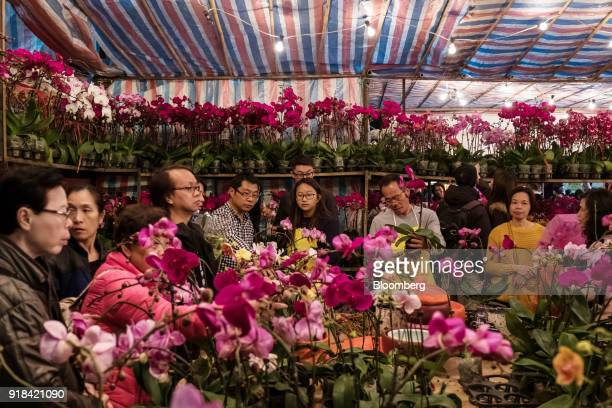 Shoppers look at orchids displayed for sale at the Lunar New Year fair at Victoria Park in Hong Kong China on Wednesday Feb 14 2018 The city's...
