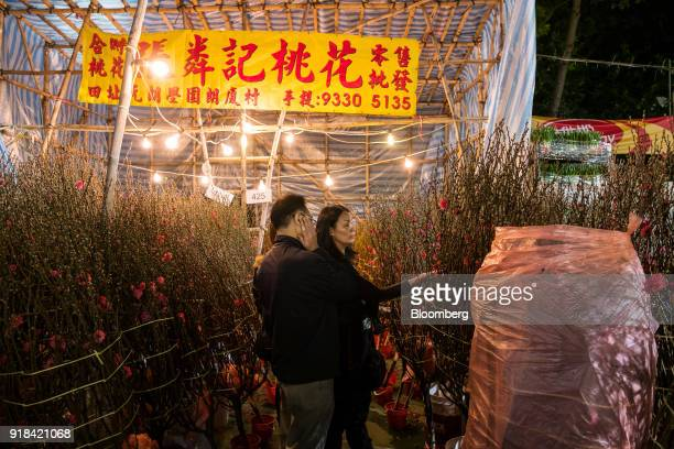 Shoppers look at peach blossom branches at the Lunar New Year fair at Victoria Park in Hong Kong China on Wednesday Feb 14 2018 The city's financial...